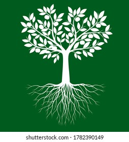 Shape of Tree with leaves, fruits  and Roots. Vector outline Illustration. Plant in Garden.