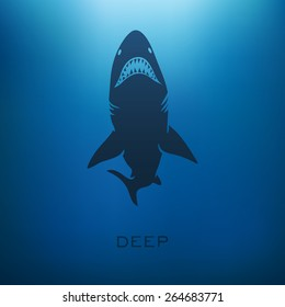 Shark concept with blur background. Vector illustration