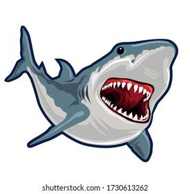 Shark fish realistic cartoon in vector