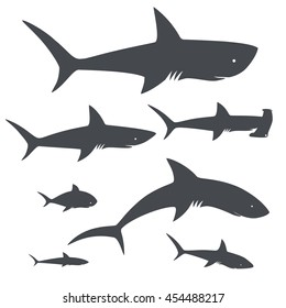Shark fish. sea life. icons collection. vector illustration