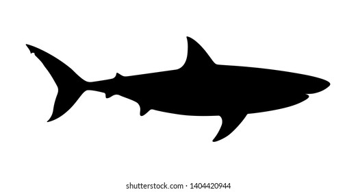 Shark icon. Shark black silhouette isolated on white background. Shark sign. Sea predator symbol. Vector illustration