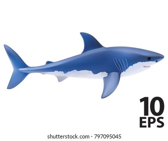Shark isolated on white. realistic vector 3d illustration