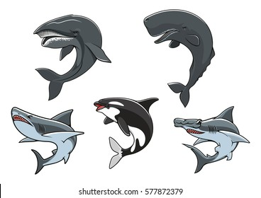 Shark, killer whale, hammerhead shark, sperm whale and blue whale isolated icon set. Dangerous marine predators for zoo aquarium symbol, underwater wildlife, t-shirt print design