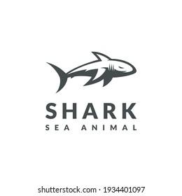 shark logo design template logo