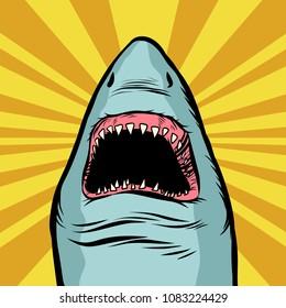 Shark ocean predator. Marine fish and water parks. Comic cartoon pop art retro vector illustration drawing