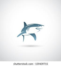 Shark - vector illustration