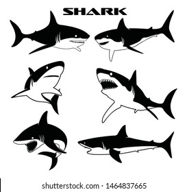 Shark vector silhouettes set. Monochrome illustration of stylized shark. isolated on white background