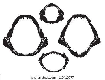 sharks jaws vector
