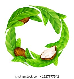 Shea nuts and butter with leaves in vector. Vector shea nuts and shea butter with green leaves in a round wreath border frame isolated on a white.