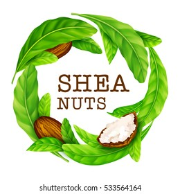Shea nuts with leaves in vector. Vector shea nuts with shea butter and green leaves in a round border frame isolated on a white.