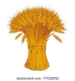 Sheaf of wheat enagraving, vector illustration
