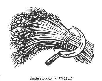 Sheaf of wheat and sickle engraving, vector illustration