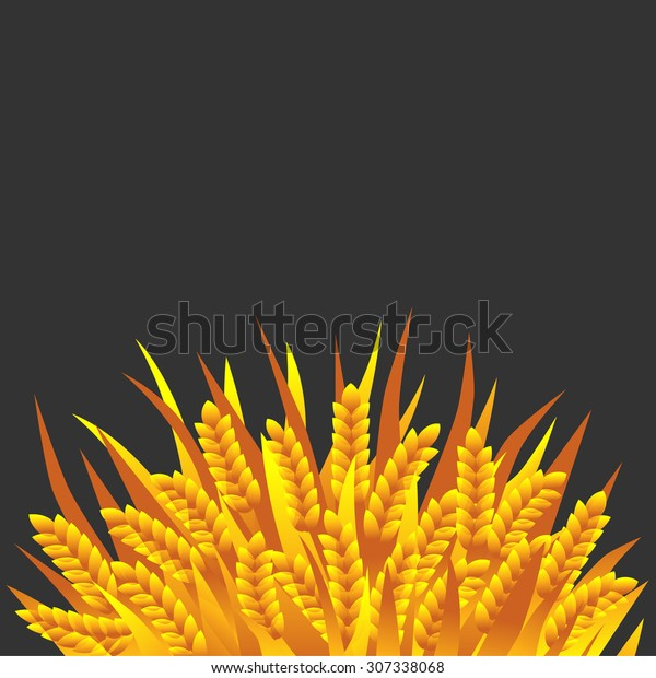 Sheaf Of Wheat Or Rye On White. Royalty Free Cliparts, Vectors, And Stock  Illustration. Image 32793450.