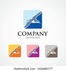 Shearwater logo concept in square shape
