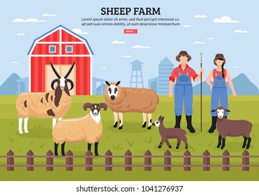 Sheep breeding husbandry with barn and farmers couple among  grazing lambs ewe ram flat poster vector illustration