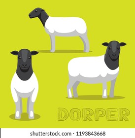 Sheep Dorper Cartoon Vector Illustration