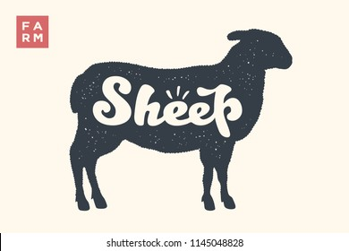 Sheep. Lettering, typography. Animal silhouette sheep or lamb and lettering Sheep. Creative graphic design for butcher shop, farmer market. Vintage poster for meat related theme. Vector Illustration