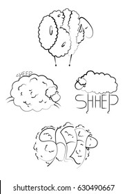 sheep and letters