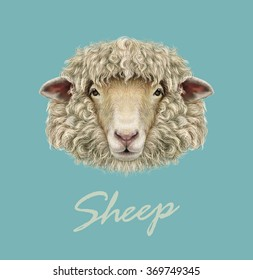 Sheep Portrait. Vector illustrated Portrait of  Ram or sheep on blue background.