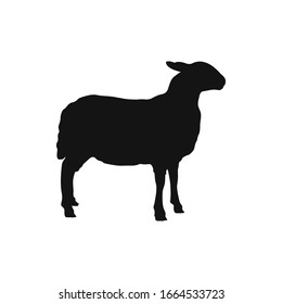 Sheep silhouette. Mammal element illustration in simple flat style isolated on white background. Vector symbol design from farm collection. Can be used in web and mobile.