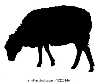 Sheep silhouette with standing pose, vector illustration