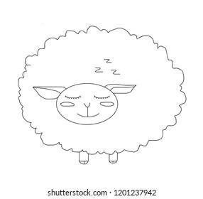 The sheep sleepy