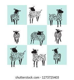 Sheeps on white and blue background. Vector illustration. Line art vector hand drawn.