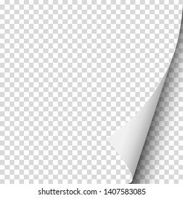Sheet of transparent paper with curled lower right corner. Vector paper mockup.