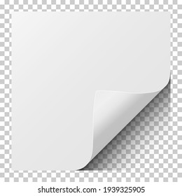 Sheet of white paper with curled corner and soft shadow. Element for ad. Vector illustration.