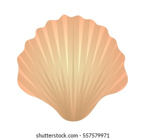 Shell icon logo element. Flat style, isolated on white background. Vector illustration, clip art