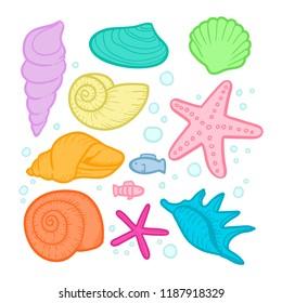 shell oceanic vector illustration
