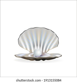 Shell with pearl isolated on white realistic vector illustration