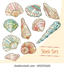 Shell set isolated on white background. Vector illustration