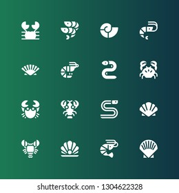 shellfish icon set. Collection of 16 filled shellfish icons included Shell, Shrimp, Pearl, Lobster, Scallop, Eel, Crab, Prawn, Seashell, Shrimps