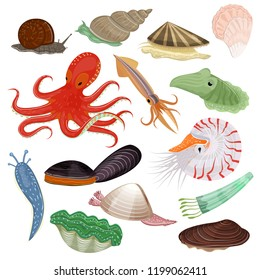 Shellfish vector marine animal octopus molluscs tentacle and animalistic character octopi oyster snail in sea illustration set of seafood cuttlefish and devilfish isolated on white background