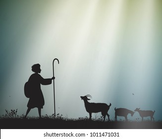 shepherd herds the goats in the morning sun rays, young shepherd, silhouette,