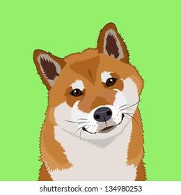Shiba inu, The buddy dog