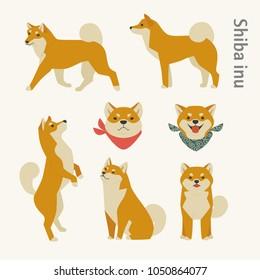 shiba inu dog breed various pose set. vector illustration flat design
