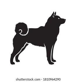 Shiba inu dog isolated vector illustration