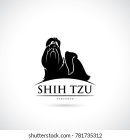 Shih Tzu dog - isolated vector illustration