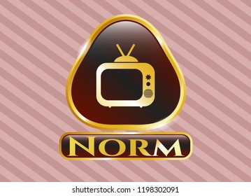 Shiny badge with old tv, television icon and Norm text inside
