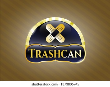 Shiny emblem with crossed bandage plaster icon and Trashcan text inside