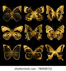Shiny golden butterflies with light effect. Butterfly collection in shiny golden colored. Vector illustration