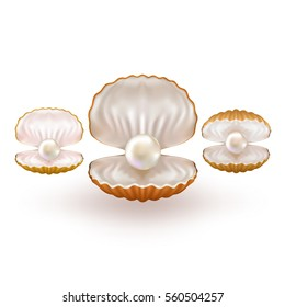 Shiny White Pearl. Quality Beautiful Open Pearl. Shell close up. Realistic single valuable object image. Vector Illustration.