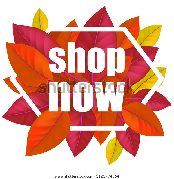 Shop now lettering with colorful leaves in frame. Modern creative inscription with dark leaves in hexagon. Illustration with lettering can be used for banner, posters and leaflets