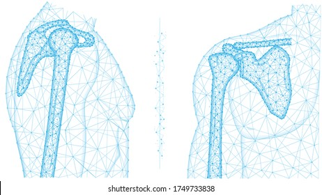 Humerous Images Stock Photos Vectors Shutterstock The humerus (me from latin humerus, umerus upper arm, shoulder; https www shutterstock com image vector shoulder joint front side view polygonal 1749733838