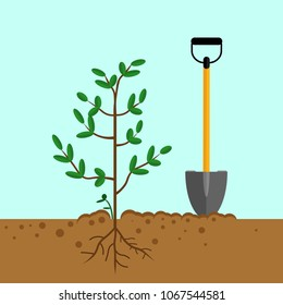 Shovel, spade with sprout, growing plant, seedling isolated on blue background. Garden tool, equipment for farm. Gardening, agriculture, cultivation. Spring work. Vector flat design
