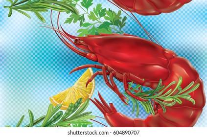 Shrimp on a blue transparent background. Vector illustration