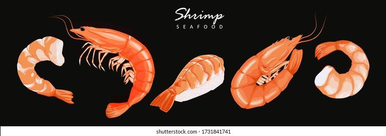 Shrimp prawn icons set. Boiled Shrimp drawing on a black background. Collection shrimp, shrimp without shell, meat, sushi. Realistic vector illustration