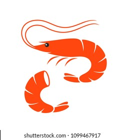 Shrimp set. Isolated shrimp on white background. Prawns. EPS 10. Vector illustration